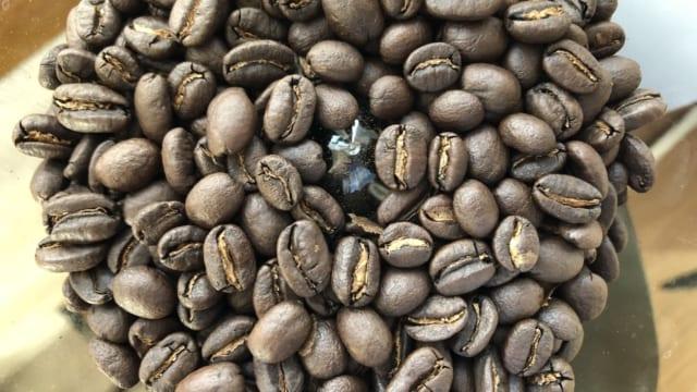 モカコチャレの豆